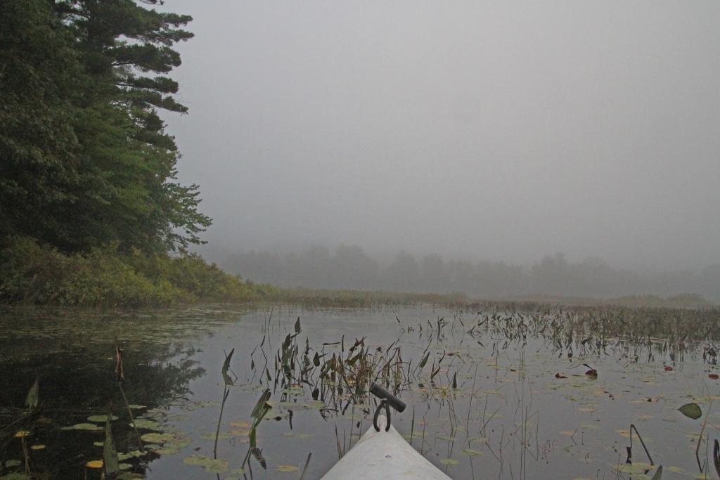 Kayak Foggy Morn 027 (1024x683)